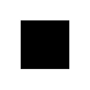 PUNTODODICI